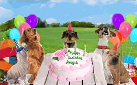 Birthday Fun Ecard With Dogs