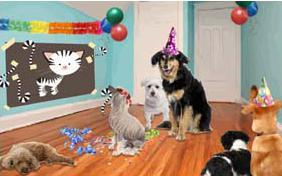 Birthday Agenda ecard with dogs