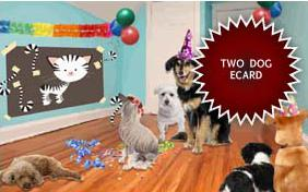 Birthday Agenda ecard with two dogs