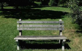 Bench outside park