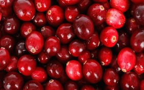 Cranberries Thanksgiving Christmas Holiday