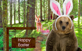 Build your own Easter ecard