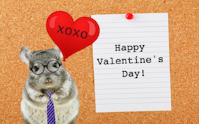 Build your own Valentine's Day ecard