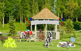 Park party gazebo outside balloons Happy Birthday celebration