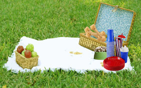 Picnic basket blanket park grass outside