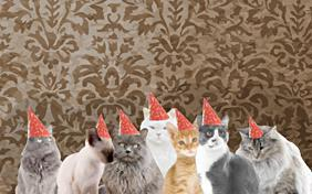 Happy Birthday From All Of Us birthday ecard with cats