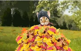 Warm Autumn Wishes cat ecard