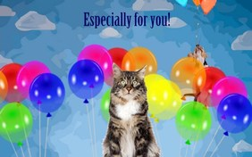 Especially For You cat ecard