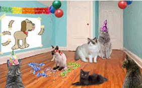 Birthday Agenda ecard with two cats