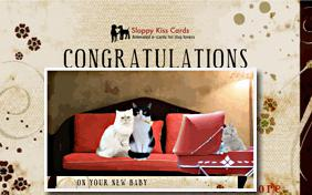 Congratulations On Your New Baby ecard with cats