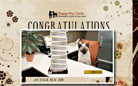 Congratulations On Your New Job ecard with cats
