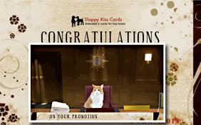 Congratulations On Your Promotion ecard with cats