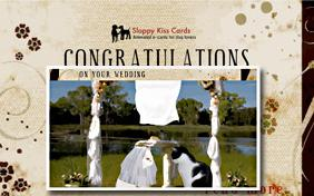 Congrats On Your Wedding ecard with cats