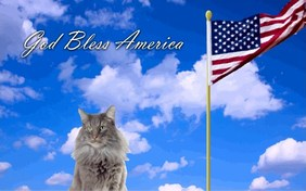 God Bless America cat ecard