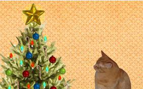 Getting Ready for Christmas ecard with cats