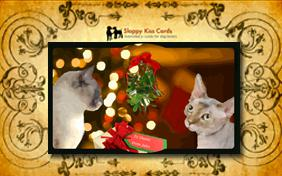Meet Under the Mistletoe invitation ecard with cats