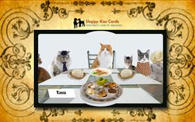 Passover Dinner invitation ecard with cats