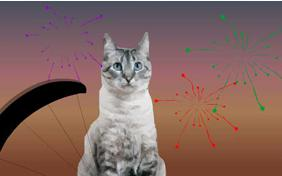 Just Dropping In: Happy New Year Edition ecard with cats