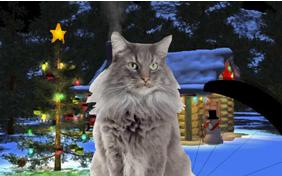 Just Dropping In: Merry Christmas Edition ecard with cats