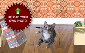 Merry Christmas: Upload Your Photo ecard with Cats