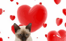 Love at first sight ecard with cats