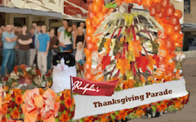 Thanksgiving Parade cat ecard