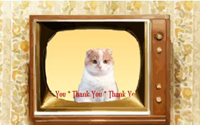 Thank You Four Ways cat ecard