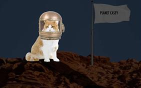 You're Out Of This World: New Year ecard with Cats