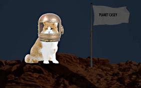 You're Out Of This World ecard with cats