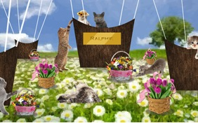 Happy Spring cat ecard