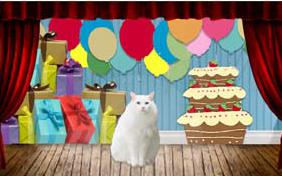 It's Just Me Happy Birthday cat ecard