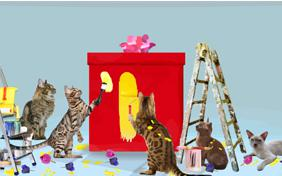 Anniversary Surprise cat ecard