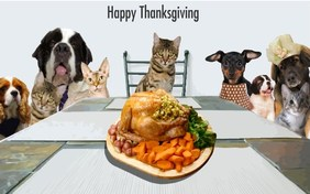Thanksgiving Day ecard with Cats