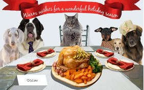 Warm Wishes holiday ecard with cats