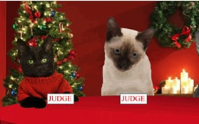 Christmas Fun ecard with cats