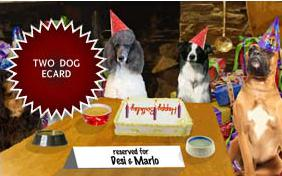 Cheers to You! birthday ecard with two dogs
