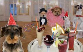 New Year's Cocktail dog ecard