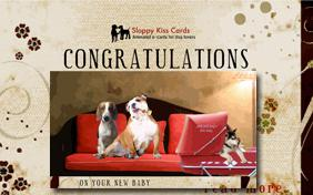 Congratulations On Your New Baby ecard with dogs