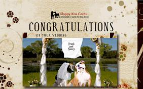 Congrats On Your Wedding ecard with dogs