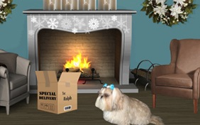 Holiday Delivery photo upload dog ecard