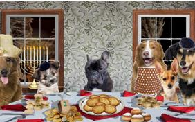 A Family Hanukkah ecard with dogs
