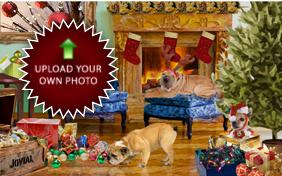 Christmas Time photo upload dog ecard