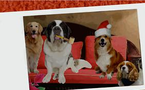 Holiday Wishes ecard with dogs