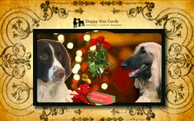 Meet Under the Mistletoe invitation ecard with dogs