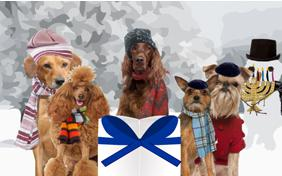 A Hanukkah Message dog ecard
