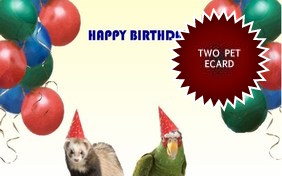 Birthday Agenda ecard with two pets