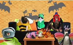 Costume Time pet halloween ecard