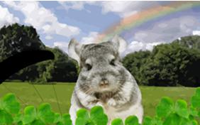 Just Dropping In: St. Patrick's Day pet ecard