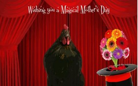 A Magical Mother's Day pet ecard