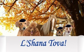 A Rosh Hashanah Message pet ecard